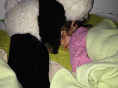 Gros-panda-veille-sur-Pauline